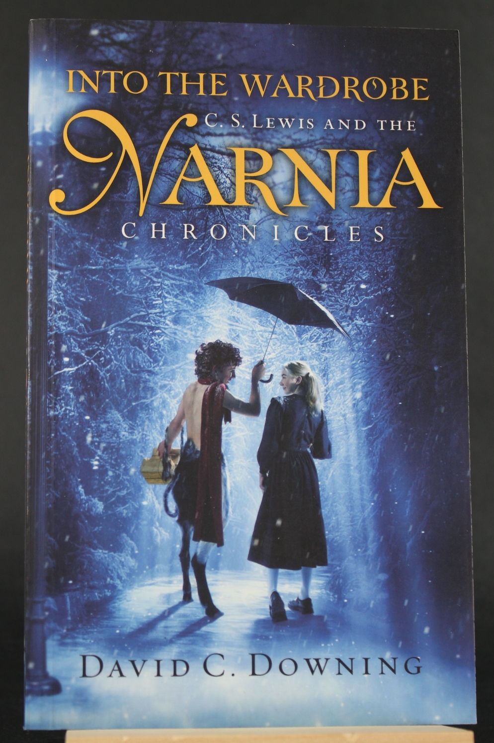 Image for Into the Wardrobe: C. S. Lewis and the Narnia Chronicles