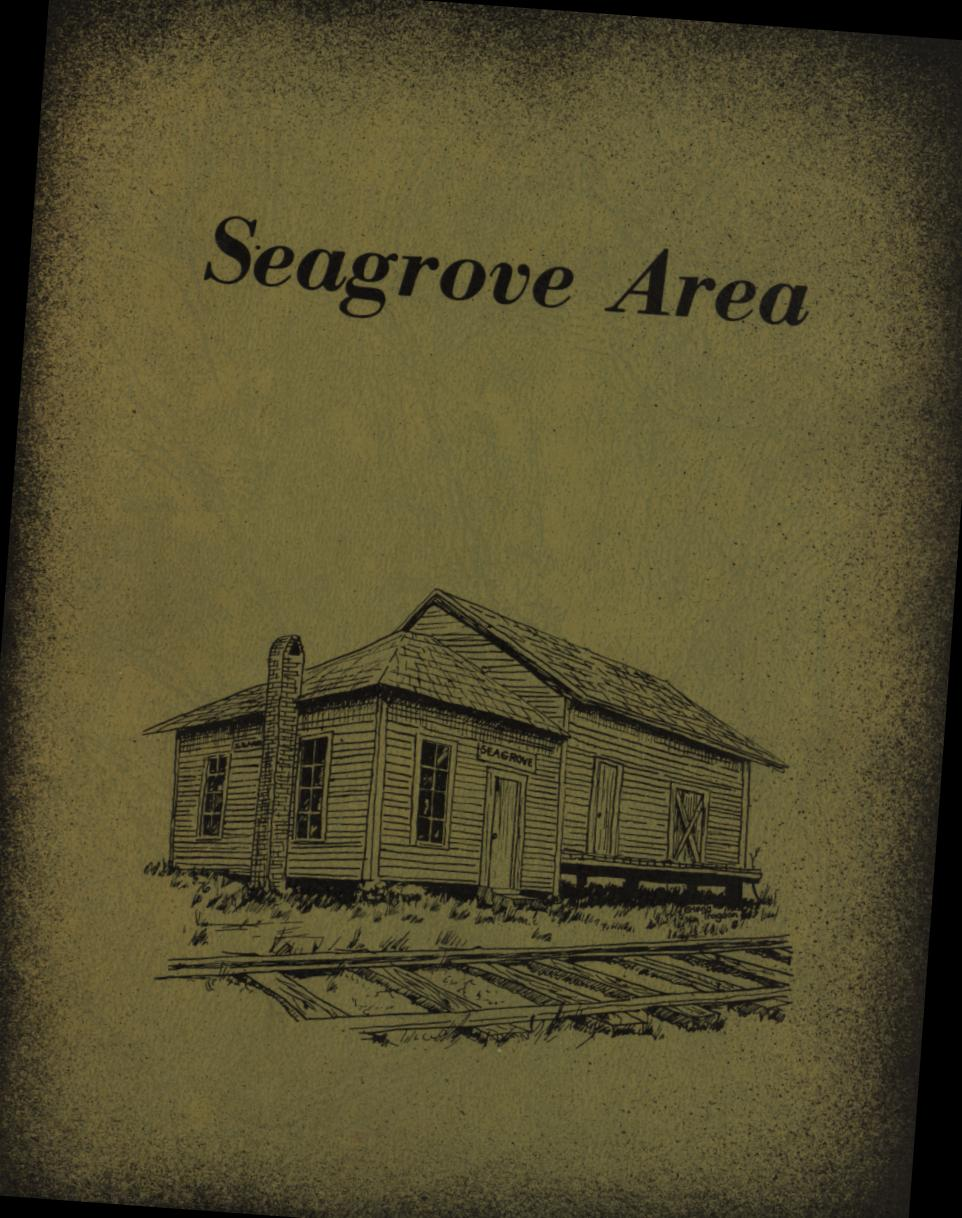 Image for Seagrove Area  (Signed First Edition)