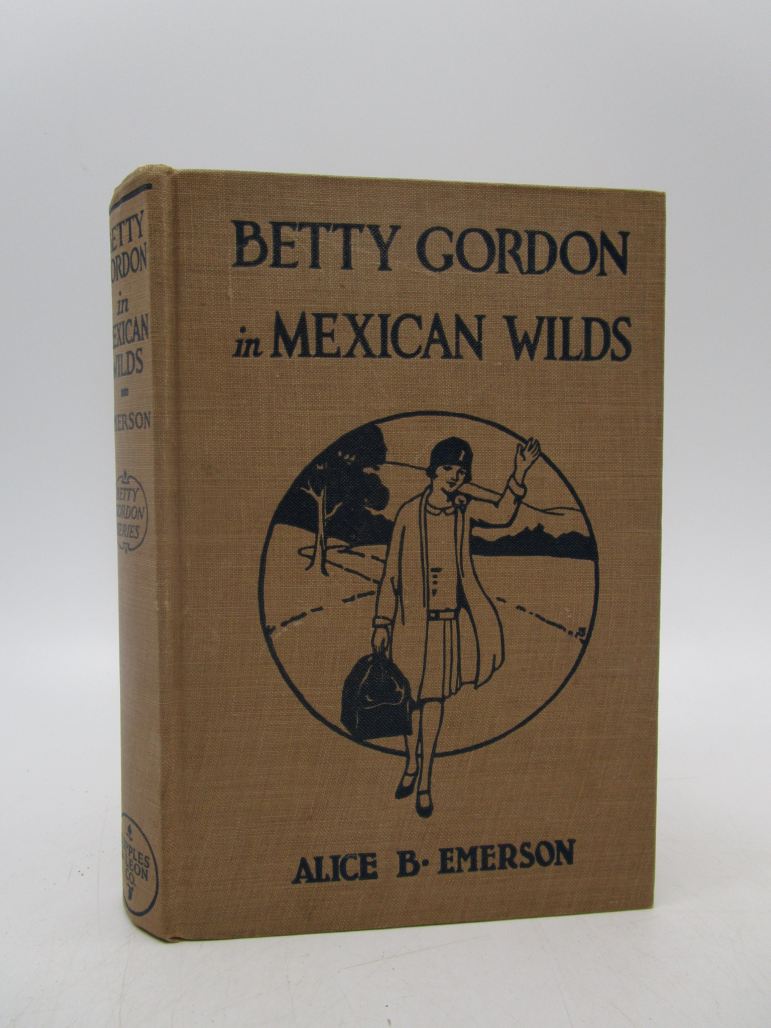 Image for Betty Gordon in Mexican Wilds or The Secret of the Mountains (First Edition)