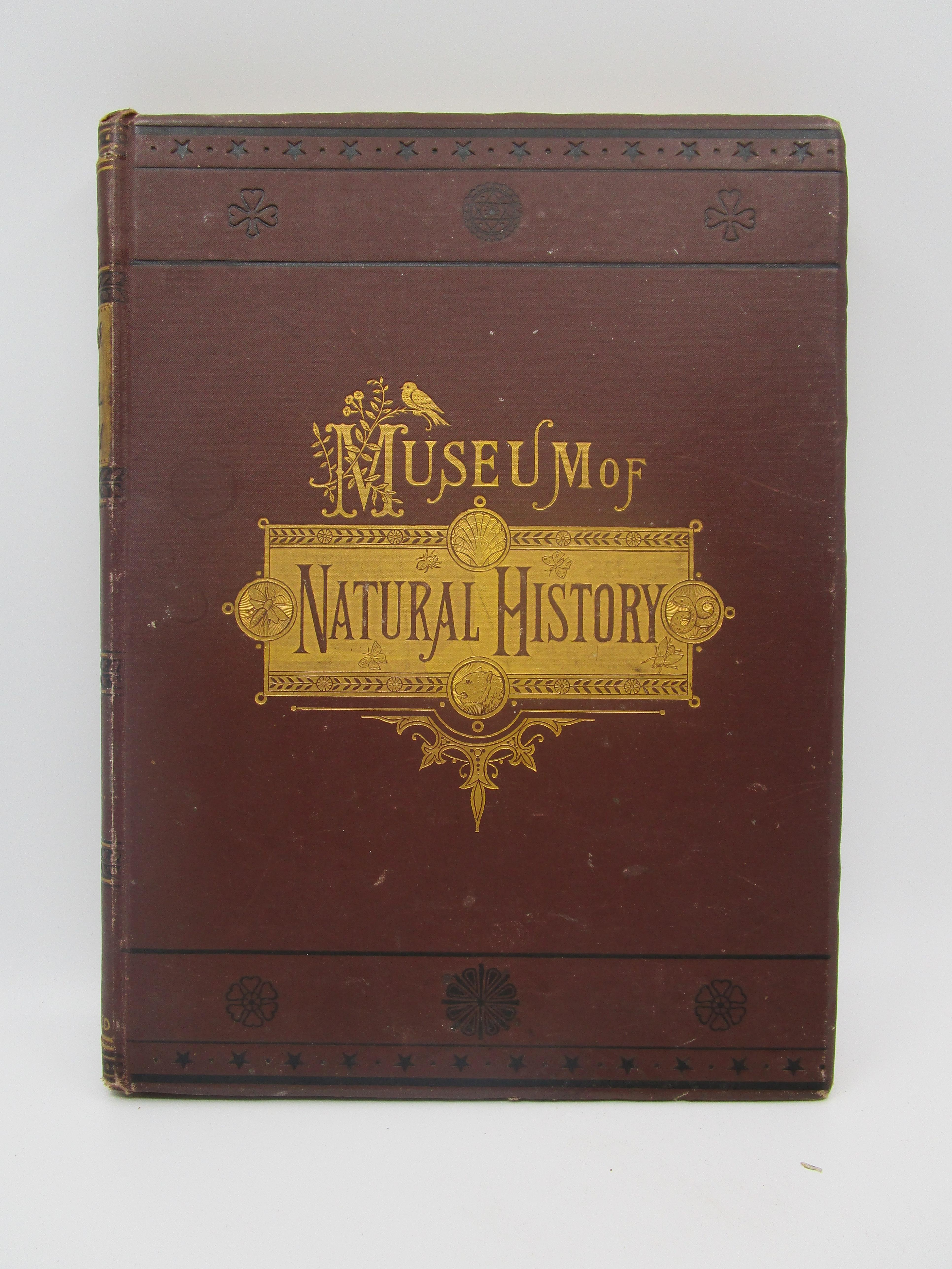 Image for The Museum of Natural History (Volume III) being a popular account of the structure, habits, and classification of the various departments of The Animal Kingdom Quadrupeds, Birds, Reptiles, Fishes, Shells, and Insects (Volume III)